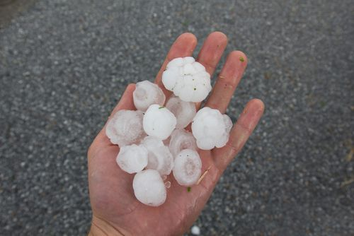 Quarter Sized Hail in an Open Hand