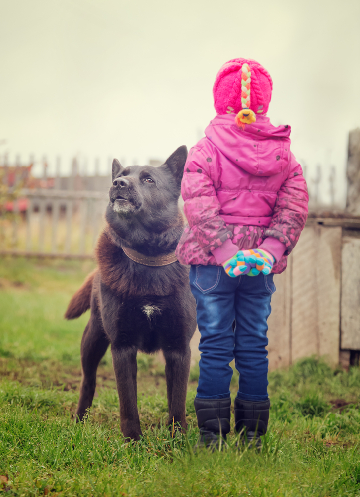 Child standing in front of big dog